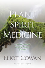 Revised_PSM_Book_Cover-150